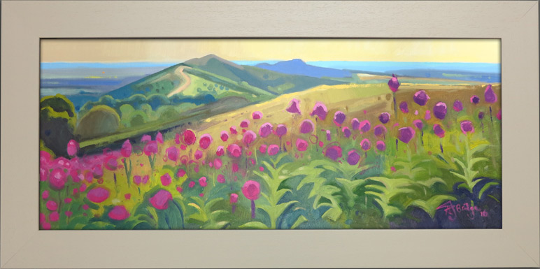 Malvern Hills Flowers